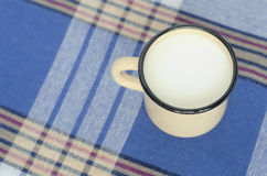 Mug with milk Stock Image