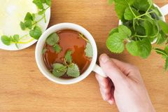 Mug of Mint tea with Melissa and lemon in hand. On wooden table Stock Photography