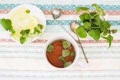 Mug of Mint tea with Melissa and lemon. Tablecloths royalty free stock image