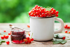 Mug of Red currant berries and jar of redcurrant jam Royalty Free Stock Images