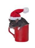 Mug of Santa Claus Stock Images