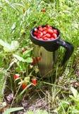 Mug with strawberries Stock Image