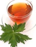 Mug with tea Stock Image