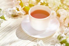 Mug of tea and apple blossom on a wooden background. Royalty Free Stock Photo