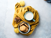 Mug of tea and cookies in winter scarf. Top view Royalty Free Stock Photography