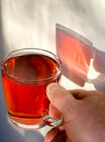 Mug tea glass hand Royalty Free Stock Photography