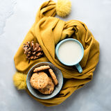 Mug of tea with milk and cookies. Winter relax square Royalty Free Stock Photos