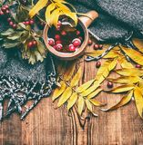 Mug of tea with red autumn berries , fall leaves and scarf on rustic wooden background Royalty Free Stock Photography