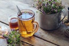 Mug of thyme tea, honey jar and rustic metal cup full of thymus serpyllum medicinal herbs