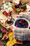 Mug of warm autumn tea Imagen de archivo libre de regalías