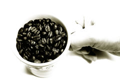Mug of whole coffee beans Royalty Free Stock Photo