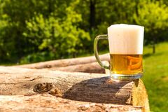 Free Mug With Beer On A Pile Of Logs Near The Forest. Beer In A Glass. Cold Refreshment In The Countryside Stock Images - 182262004