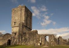 mugdock milngavie Глазго замока Стоковое Изображение