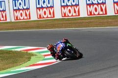 MUGELLO - WŁOCHY, CZERWIEC 3: Hiszpańszczyzny Yamaha jeźdza indywidualista Vinales podczas kwalifikować 2017 MotoGP OAKLEY GP Wło Obraz Royalty Free