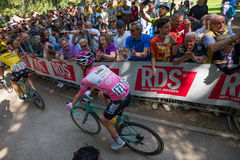 Muggiò, Italy May 26, 2016; Steven Kruijswijk in pink jersey Royalty Free Stock Photography