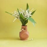 Mughetto in vaso dell'argilla Immagine Stock Libera da Diritti