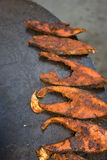 Mughlai cuisine Stock Images