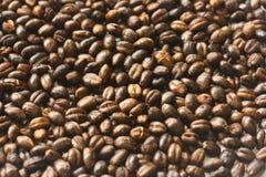 Mugicha, té de cebada asado Imagen de archivo libre de regalías