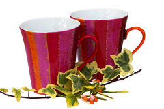 Mugs & Autumn Spray. Two china mugs with a mixtures of autumn colored leaves, ivy & euonymus Stock Images