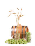 Mugs with barley and hop Royalty Free Stock Image