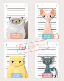 Mugshot of  cute cats holding a banner Stock Photo