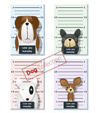 Mugshot of  cute dogs holding a banner 1 Royalty Free Stock Photos