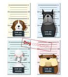 Mugshot of  cute dogs holding a banner 2 Stock Image