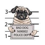 Mugshot dog cartoon. vector illustration