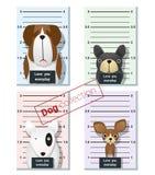 Mugshot śliczni psy trzyma sztandar 1 Zdjęcia Royalty Free