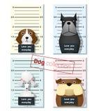 Mugshot śliczni psy trzyma sztandar 2 Obraz Stock