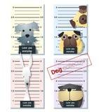 Mugshot śliczni psy trzyma sztandar 3 Zdjęcia Royalty Free