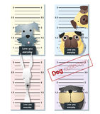 Mugshot von den netten Hunden, die eine Fahne 3 halten Lizenzfreie Stockfotos