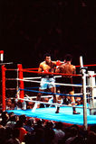 Muhammad Ali v. Leon Spinks Royalty-vrije Stock Foto's