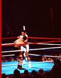Muhammad Ali V. Leon Spinks royaltyfri fotografi