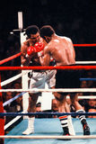 Muhammad Ali v. Leon Spinks. Muhammad Ali takes on Leon Spinks February of 1978. (Image taken from color slide royalty free stock photography