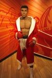 Muhammed Ali Obraz Royalty Free