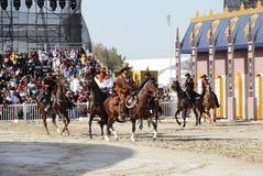 Muharraq horse riding school performs, Bahrain Stock Image
