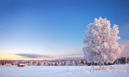 Muhos winter. A view down on a wintery field Royalty Free Stock Images