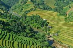 Mui Giay斑点和H ` Mong种族人民的露台的米领域 图库摄影