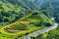 Mui Giay斑点和H ` Mong种族人民的露台的米领域 库存照片