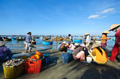 Mui Ne海滩 免版税库存图片