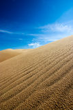 Mui Ne Dunes. White sand dunes in Mui Ne royalty free stock photo