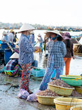 Vietnamese fish market Royalty Free Stock Images
