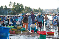 Vietnamese fishers at work Royalty Free Stock Photo
