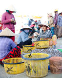 Vietnamese fishers at work Stock Photo