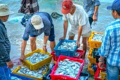 Mui Ne, Vietname, o 23 de abril de 2018: Introduza no mercado a aldeia piscatória adiantada quando os peixes de venda de compra o Fotos de Stock