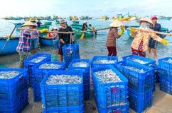 Mui Ne, Vietname, o 23 de abril de 2018: Introduza no mercado a aldeia piscatória adiantada quando os peixes de venda de compra o Imagem de Stock
