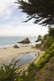 Muir海滩,在旧金山西北部 免版税库存图片