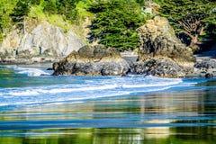 Muirstrand op vreedzame oceaankust in Californië Royalty-vrije Stock Foto