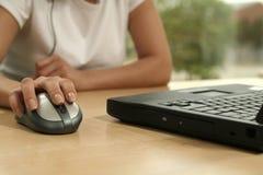 Muis en laptop Stock Afbeelding